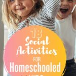 homeschooling and socialization